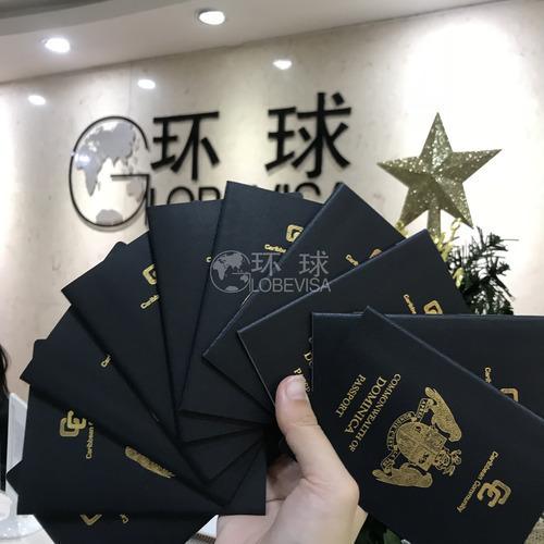 多米护照.jpg
