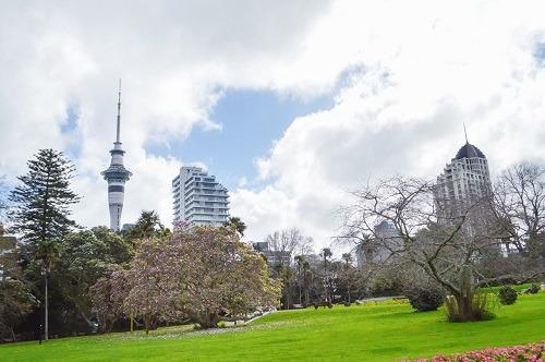 摄图网_501180465_banner_新西兰奥克兰公园风光(企业商用).jpg